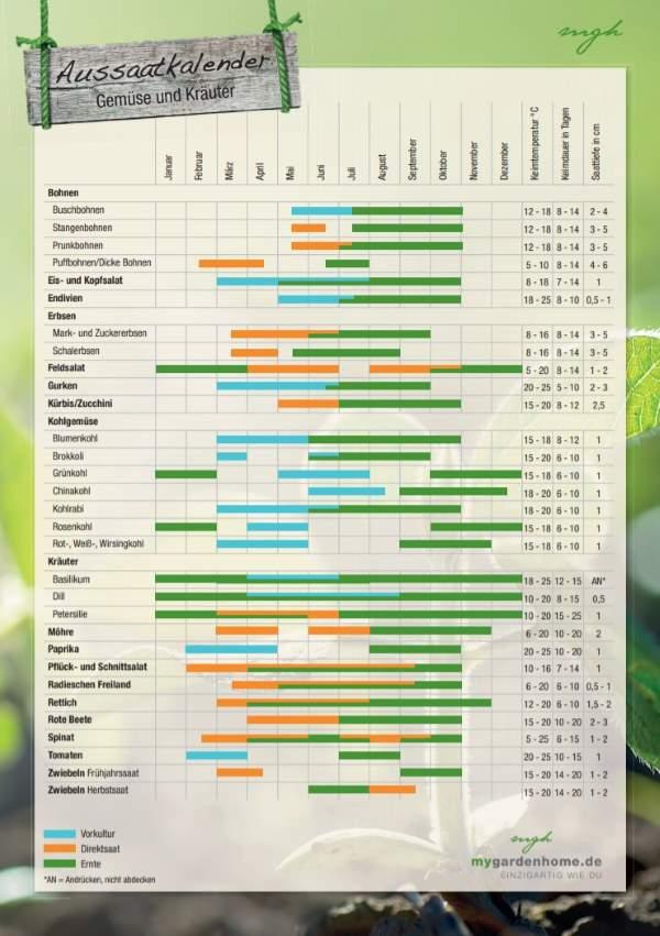 Aussaatkalender (PDF)