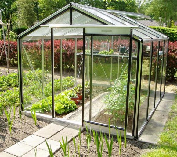 ACD Aluminium Glas Gewächshaus R204L-B, 6,91m²