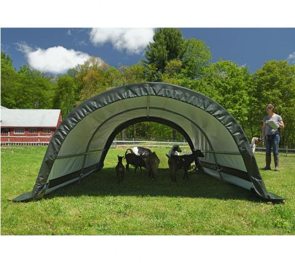 ShelterLogic Run-In-Weidezelt 7,8 m², 260x300 cm