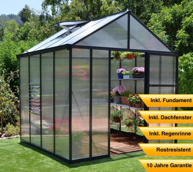 premium aluminium gew chshaus treibhaus glory 44 inkl. Black Bedroom Furniture Sets. Home Design Ideas