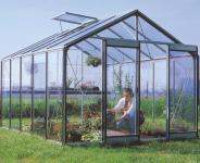 ACD Aluminium Glas Gewächshaus R305H-B, 11,35m²